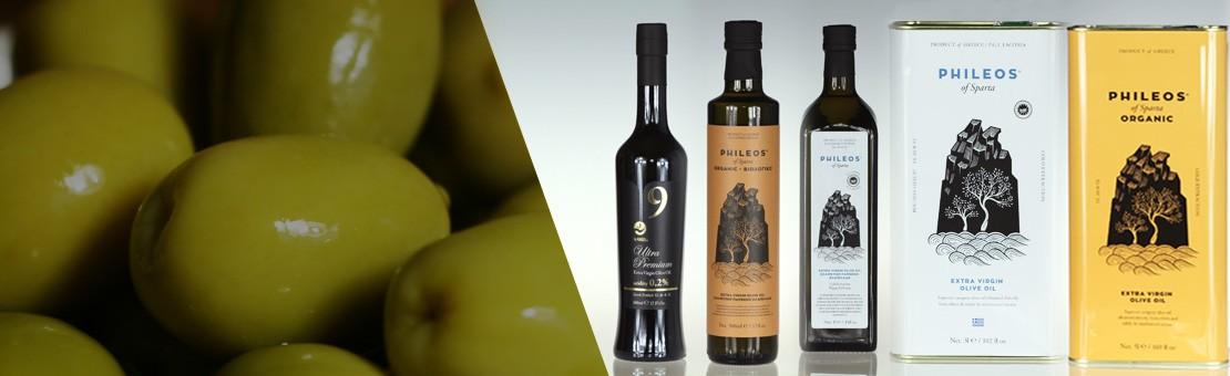 olive-oil-banner