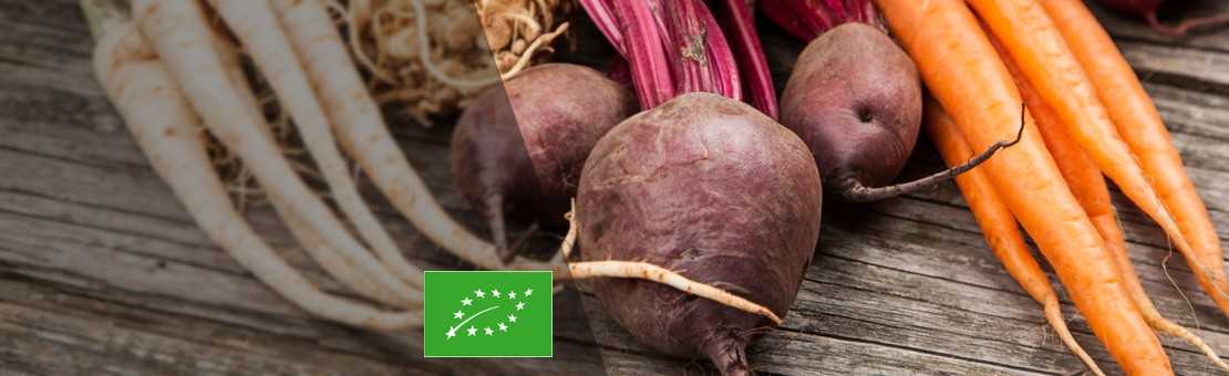 soki-ekologiczne-tloczone-z-kiszonych-warzyw